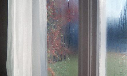 Få nye gardiner fra gardinbussen